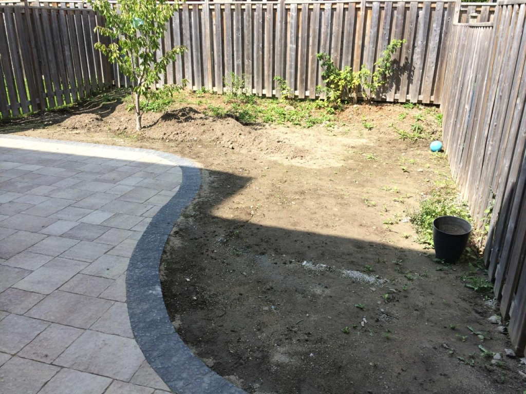 Progress Photo: Backyard - Before