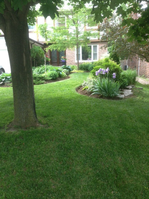 Gallery Image 2 - Freshly Cut Lawn